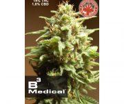 10 UND FEM - B3 MEDICAL