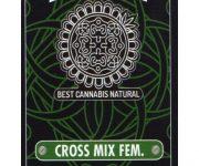 10 UND FEM - CROSS MIX FEM