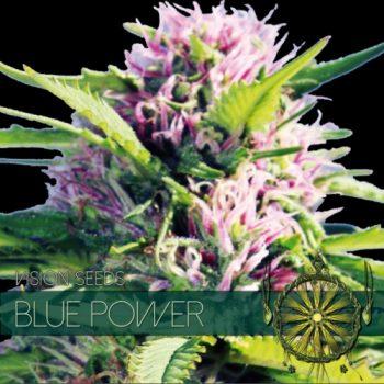 3 UND FEM - BLUE POWER