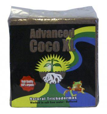 ADVANCED COCO XL