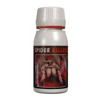 SPIDER KILLER 60 ML