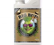 BIG BUD COCO LIQUID 1 LT