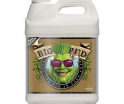 BIG BUD COCO LIQUID 10 LT