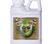 BIG BUD COCO LIQUID 250 ML