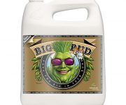 BIG BUD COCO LIQUID 5 LT