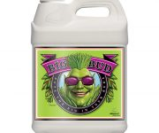 BIG BUD  LIQUID 10 LT