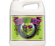 BIG BUD  LIQUID 5 LT