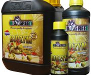 BIO GREEN BIOZYM 250ML