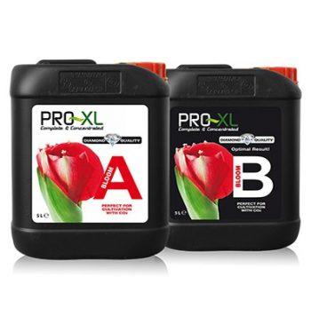 BLOOM A&B 1 LT PRO-XL