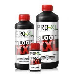 BLOOM XXL 100 ML PRO-XL