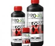 BLOOM XXL 500 ML PRO-XL