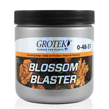 BLOSSOM BLASTER 130 GRS GROTEK