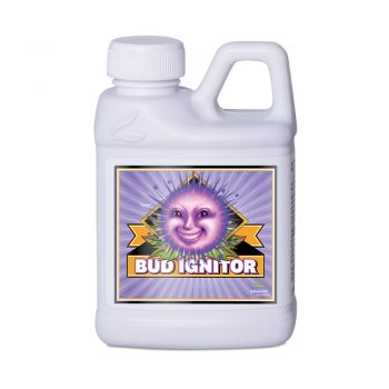 BUD IGNITOR 250 ML