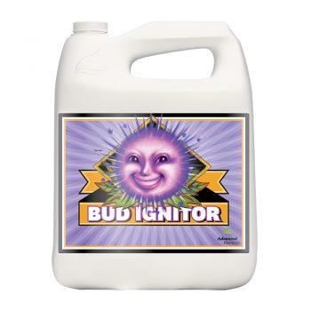 BUD IGNITOR 5 LT