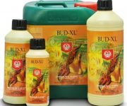 BUD XL 250 ML HOUSE &GARDEN