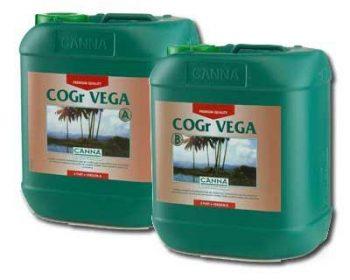 C.COGR VEGA A 5 L.