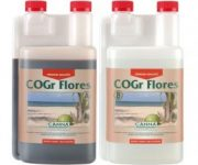 C.COGR FLORES A 1L.