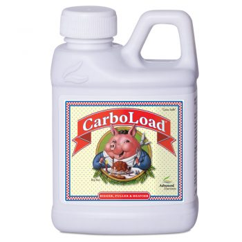 CARBOLOAD LIQUID 250 ML