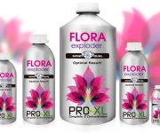 FLORA EXPLODER 100 ML PRO-XL