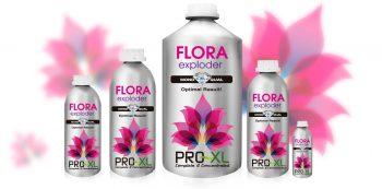 FLORA EXPLODER 500 ML PRO-XL