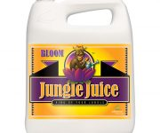JUNGLE JUICE BLOOM 5 LT