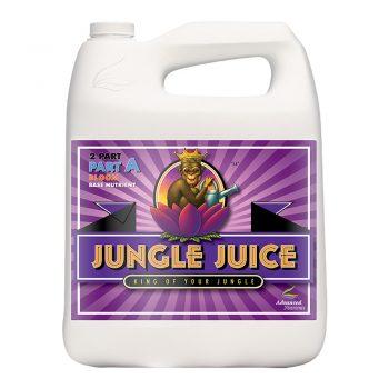 JUNGLE JUICE BLOOM B 5LT