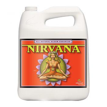 NIRVANA 5 LT