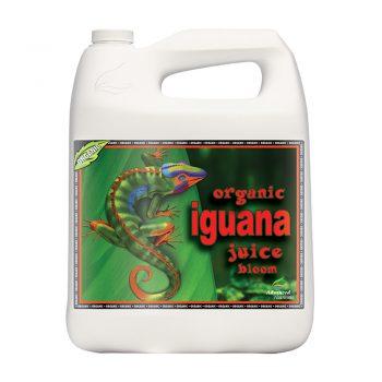 ORGANIC IGUANA JUICE BLOOM 5 LT