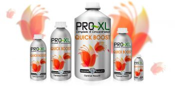 QUICK BOOST 250 ML PRO-XL
