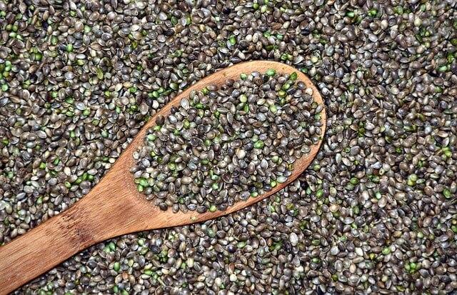 como conservar semillas